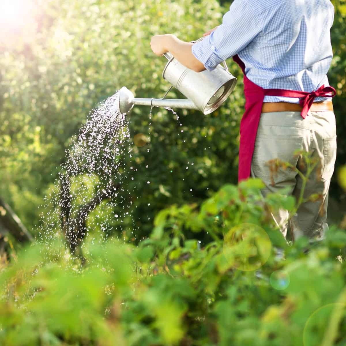 best places to retire for gardeners